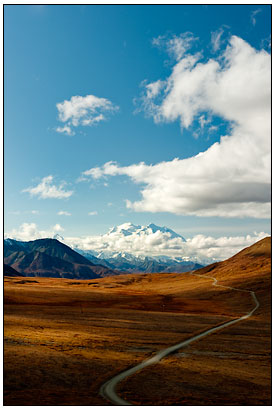 Road_to_Denali_1.jpg